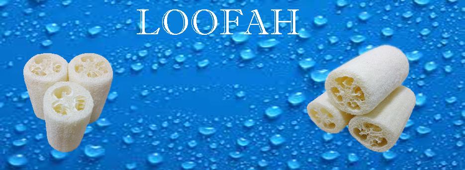 loofah slider